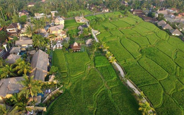 Wapa di Ume Ubud Resort & Spa