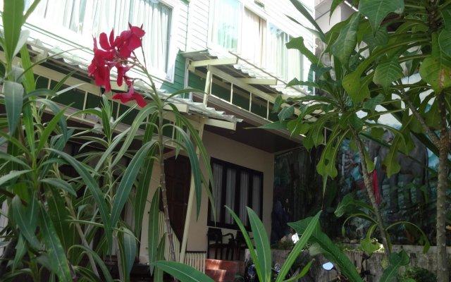 Five Elephant Hostel вид на фасад