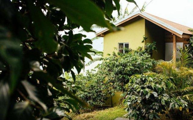 blue ridge restaurant cottages castleton jamaica zenhotels rh zenhotels com