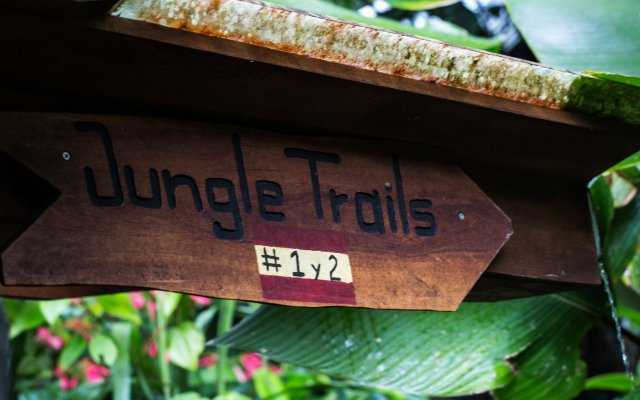 Omega Tours Adventure Company Eco Jungle Lodge In La Ceiba Honduras From 74 Photos Reviews Zenhotels Com