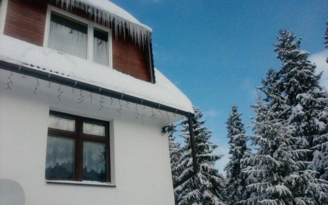 Апартаменты Guest House & Apartment Nabucco with Mountain View Закопане вид на фасад