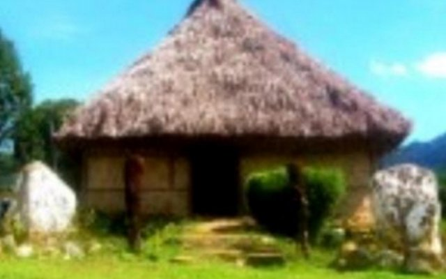 Отель Nalesutale Village Lodges Фиджи, Вити-Леву - отзывы, цены и фото номеров - забронировать отель Nalesutale Village Lodges онлайн