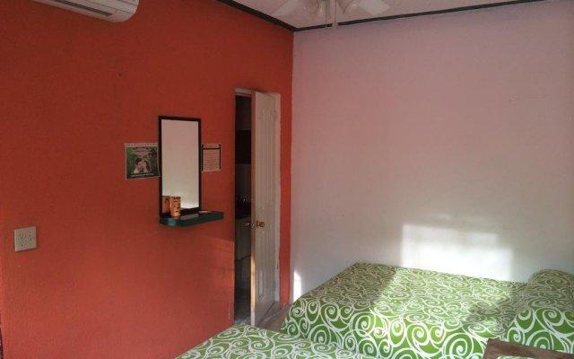 Отель N Vanessa Мексика, Сан-Хосе-дель-Кабо - отзывы, цены и фото номеров - забронировать отель N Vanessa онлайн комната для гостей