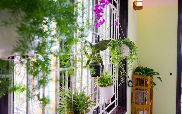 Отель Nature Homestay Вьетнам, Хойан - отзывы, цены и фото номеров - забронировать отель Nature Homestay онлайн вид на фасад
