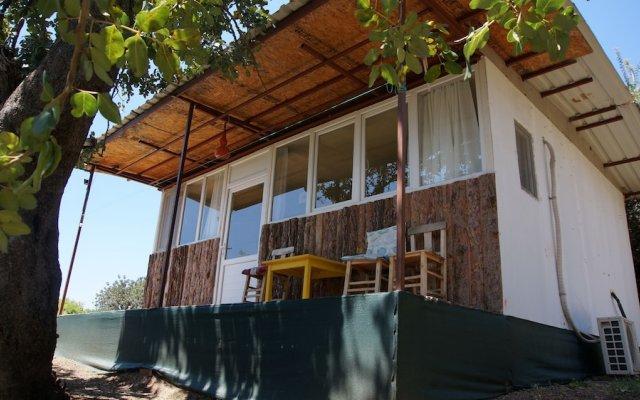 Отель Shiva Camp Патара вид на фасад