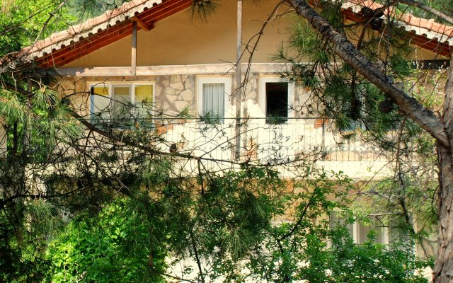 Гостевой Дом Dionysos Lodge вид на фасад