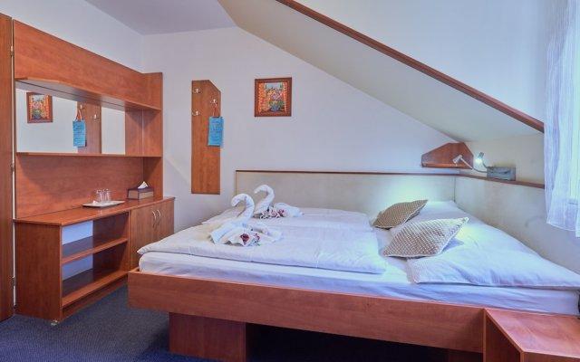 Отель Francis Чехия, Франтишкови-Лазне - отзывы, цены и фото номеров - забронировать отель Francis онлайн комната для гостей