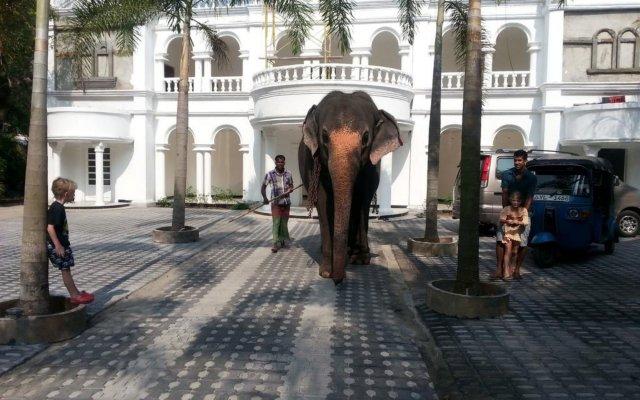 Отель Bougain Villa Шри-Ланка, Берувела - отзывы, цены и фото номеров - забронировать отель Bougain Villa онлайн вид на фасад