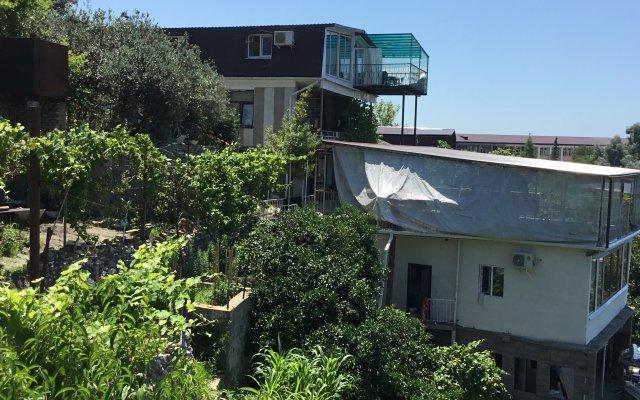 Апартаменты Вилла Мимоза в Сухуми 0