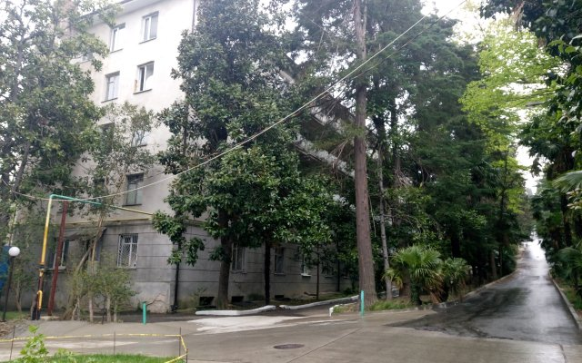 Гостиница Дом Артистов Цирка Сочи вид на фасад