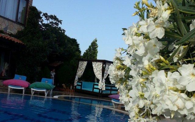 Papazlıkhan Турция, Алтынолук - отзывы, цены и фото номеров - забронировать отель Papazlıkhan онлайн бассейн