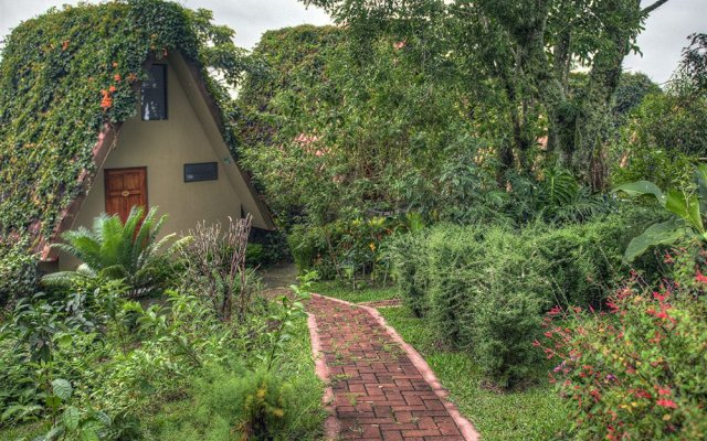 Pura Vida Spa Yoga Retreat In Alajuela Costa Rica From 261 Photos Reviews Zenhotels Com