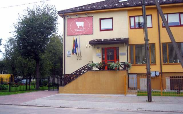 Гостевой дом Auksine Avis вид на фасад