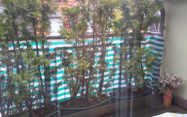 Апартаменты Tolstov-Hotels Big 2 Room Apartment with Balcony вид на фасад