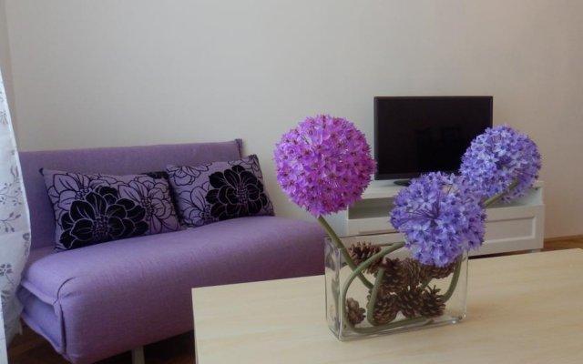 Отель Krakovska Holiday Appartments комната для гостей