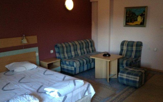 Отель Family Hotel Evropas Болгария, Сандански - отзывы, цены и фото номеров - забронировать отель Family Hotel Evropas онлайн комната для гостей