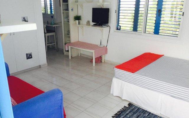 Апартаменты Ikaria Village Studio комната для гостей