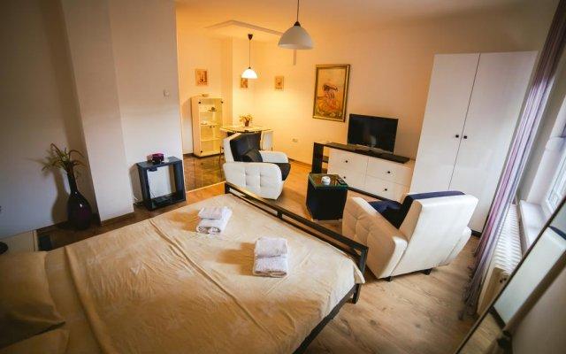 Отель Lina Apartments Сербия, Белград - отзывы, цены и фото номеров - забронировать отель Lina Apartments онлайн комната для гостей