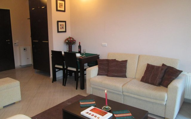 Апартаменты Green Life Ski & Spa Alexander Services Apartments Банско комната для гостей