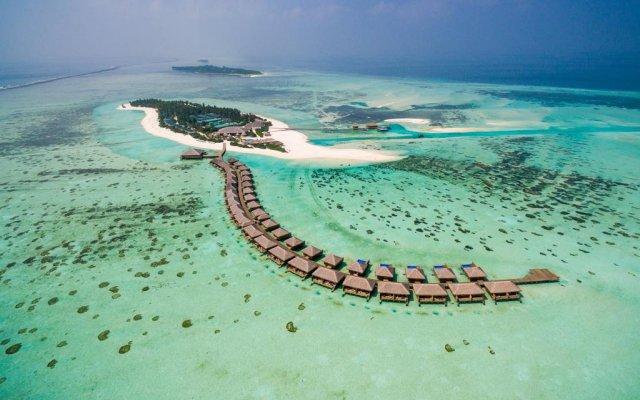 Отель Cocoon Maldives