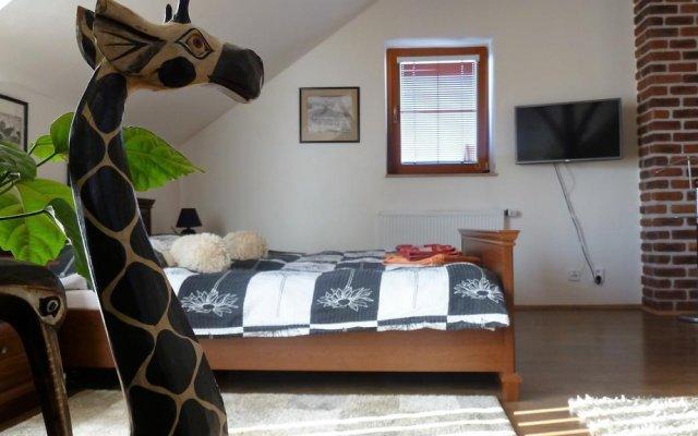 Отель Green Apartment Чехия, Франтишкови-Лазне - отзывы, цены и фото номеров - забронировать отель Green Apartment онлайн комната для гостей