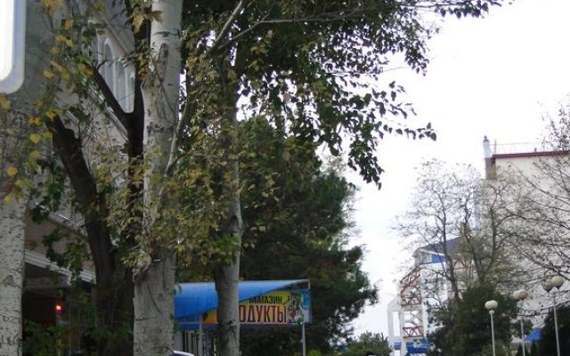 Novosel Apart-Hotel 1