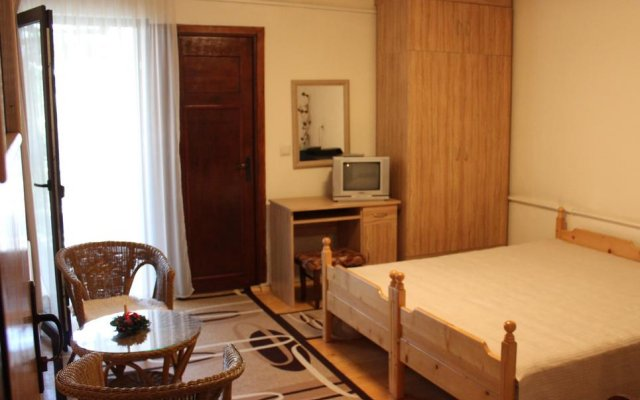 Отель Nina 1 Rooms Банско комната для гостей