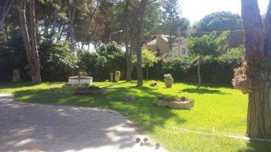Casa Vacanze Arenella