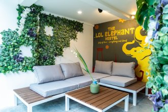The LOL Elephant Hostel