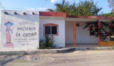 Estudios La Catrina 2