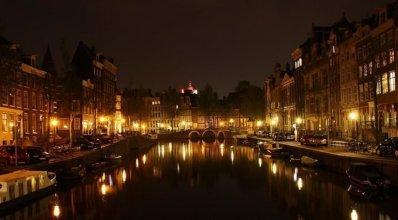 Tulip of Amsterdam