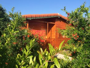 Yildiz Pension Bungalows