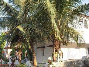 Macedo Palms Lemonmint
