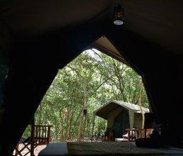 Mahoora Tented Safari Camp - Kumana
