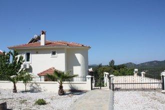Shiraz Villa