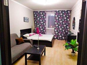 Apartment Hanaka on Perovskaia 66