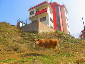 Sunrise Homestay Nepal