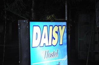 Daisy Hostel