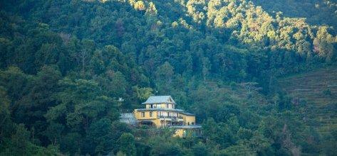 The lapsi tree resort