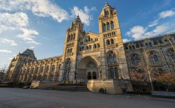 Quebec Court