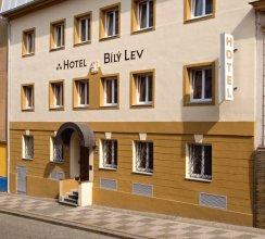 Hotel White Lion (bily Lev)