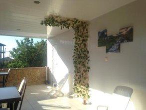 Guesthouse Viola