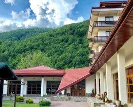 Гостиница Вертикаль