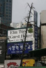 Elm Tree Guesthouse Myeongdong