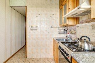 Domumetro Na Prazhskoj Apartments