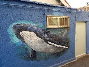 Jinho's Black Whale Guesthouse & Bar