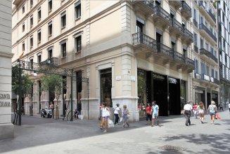 The Boutique Apartments