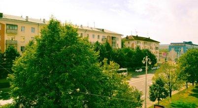 Apartment on Sovetskiy