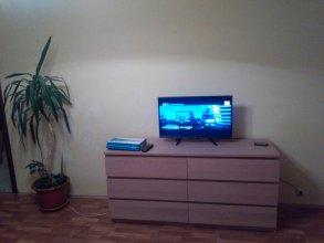 Domumetro Na Anokhina Apartments
