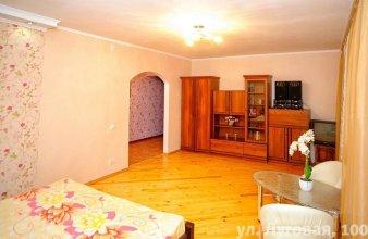 Apartment Lugovaya 100